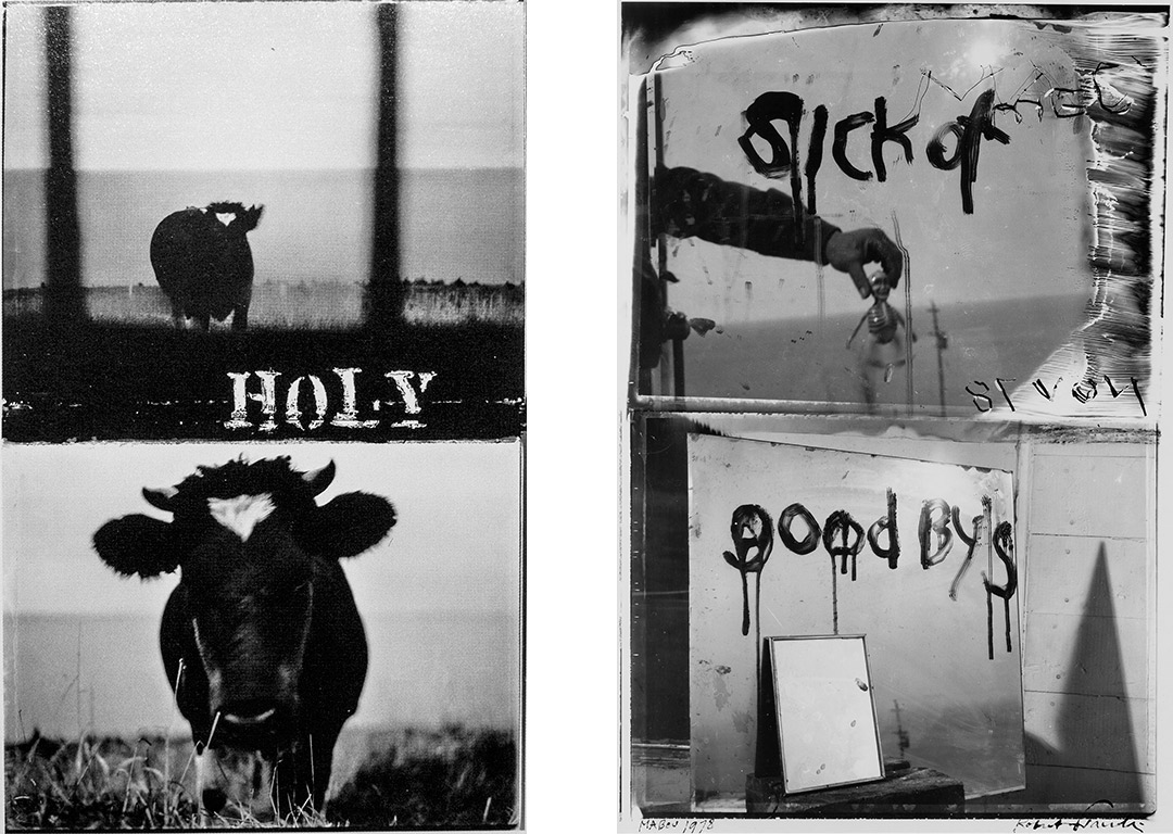 Izq: Holy Cow, 1984 / Der: Sick of Good By´s, 1978