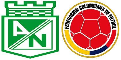 Atlético Nacional de Colombia pide que declaren campeón al Chapecoense