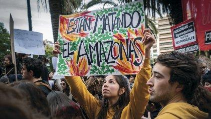 La crisis ecológica como resultado de la depredación capitalista