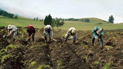 Antes de ser disuelto, el Congreso peruano favoreció a los agroindustriales