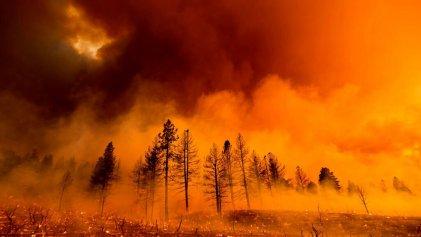 Los incendios forestales vuelven a romper récords en California