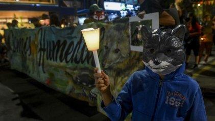 Ley de Humedales: miles se movilizaron de Plaza de Mayo a Congreso