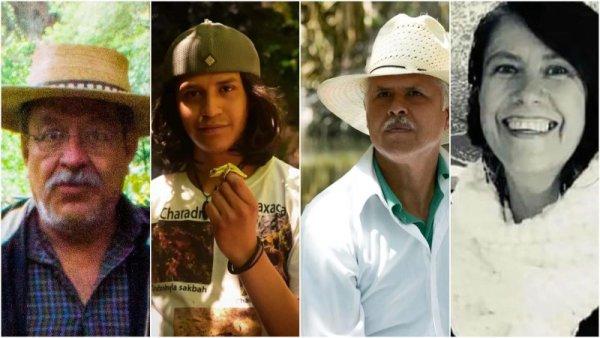 Asesinatos de ambientalistas en México: entre la impunidad y el olvido