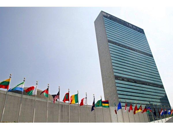 La ONU reconoce al aborto como un derecho humano